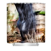Xengo Shower Curtain