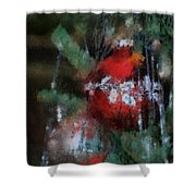 Xmas Red Ornament Photo Art 03 Shower Curtain