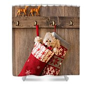 Xmas Stockings Shower Curtain