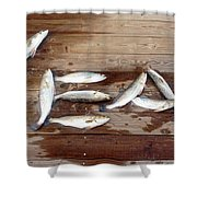 Yea It's Trout For Dinner Shower Curtain