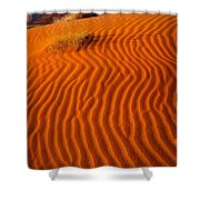 Yei-bi-chai Shower Curtain