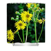 Yellow Achieve Shower Curtain