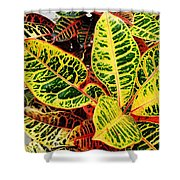 Yellow And Green Croton Shower Curtain