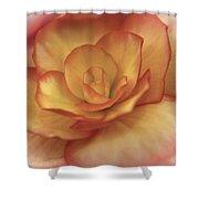 Yellow And Orange Rose Shower Curtain