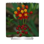 Yellow And Red Flowers Shower Curtain