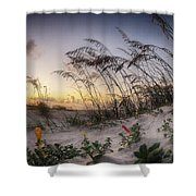 Yellow And Red Flowers On The Beach Shower Curtain