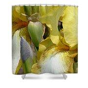 Yellow And White Iris Shower Curtain