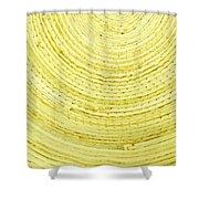 Yellow Arcs Shower Curtain