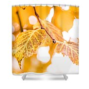 Yellow Autumn Shower Curtain