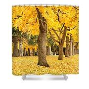 Yellow Autumn Wonderland Shower Curtain