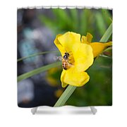 Yellow Bell Flower With Honeybee Shower Curtain