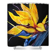 Yellow Bird Shower Curtain