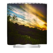 Yellow Blue And Green Shower Curtain by K Simmons Luna