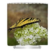 Yellow Butterfly 2 Shower Curtain