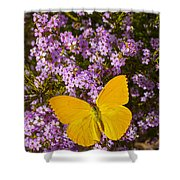 Yellow Butterfly On Pink Flowers Shower Curtain