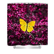 Yellow Butterfly On Red Flowering Bush Shower Curtain