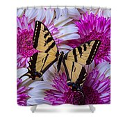 Yellow Butterfly Resting Shower Curtain