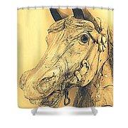 Yellow Carousel Horse Shower Curtain
