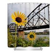 Yellow Cone Flowers And Bridge Shower Curtain