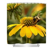 Yellow Coneflower And Bee Shower Curtain