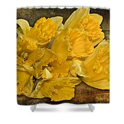 Yellow Daffodils And Texture Shower Curtain