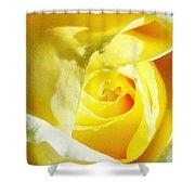 Yellow Diamond Rose Palm Springs Shower Curtain