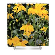 Yellow Echinacea Shower Curtain