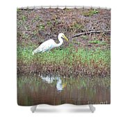 Yellow-eyed Beauty Shower Curtain