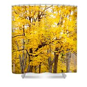 Yellow Fall Shower Curtain