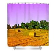 Yellow Field Shower Curtain