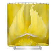 Yellow Flame - D009021 Shower Curtain
