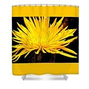 Yellow Flash Shower Curtain