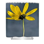 Yellow Flower Against A Stormy Sky Shower Curtain