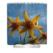 Yellow Flower On Blue Sky Shower Curtain