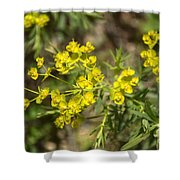 Yellow For Summer Shower Curtain