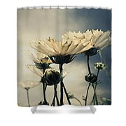 Yellow Gerber Daisy Shower Curtain