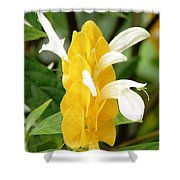 Yellow Ginger Blossom Shower Curtain