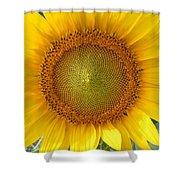 Yellow Glory #1 Shower Curtain