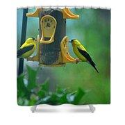 Yellow Grosbeak Duo Shower Curtain