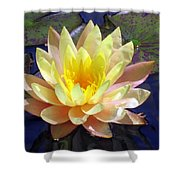 Yellow Hardy Water Lily Shower Curtain