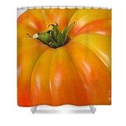 Yellow Heirloom Tomato Art Prints Shower Curtain