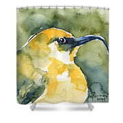 'akiapola'au - Hawaiian Yellow Honeycreeper Shower Curtain