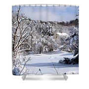 Yellow House In Winter Shower Curtain