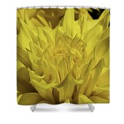 Yellow It Is Shower Curtain