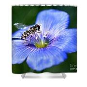Blue Flax Flower Shower Curtain