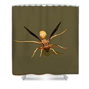 Yellow Jacket Wasp Shower Curtain
