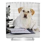 Yellow Lab In Lab Coat Shower Curtain