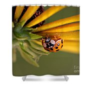 Yellow Lady - 3 Shower Curtain