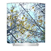 Yellow Leaves Vintage Shower Curtain