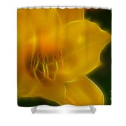 Yellow Lily 6069-fractal Shower Curtain